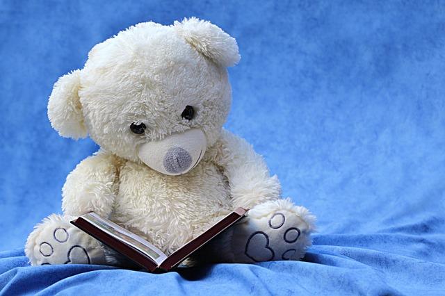 medvídek nad knihou